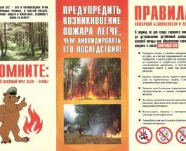 Начальник Отдела надзорной деятельности и профилактической работы Василеостровского района информирует о произошедших пожарах!